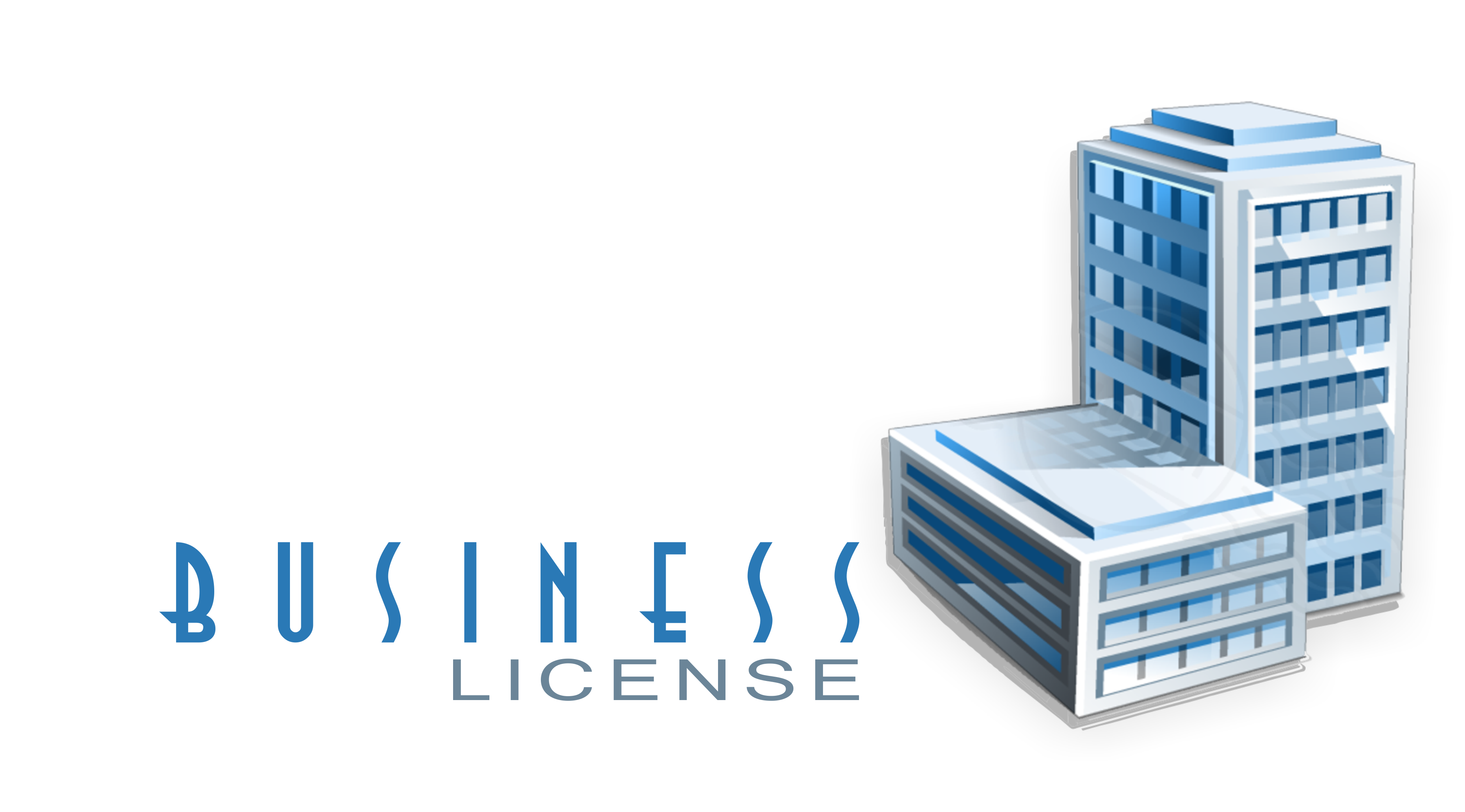 business license online